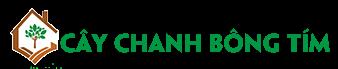 Cây Chanh Bông Tím