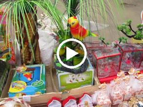 Video: Turda, Str. Tineretului - comert stradal, oferta de Martisor - 2010.01.01