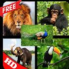 100 sonidos de animales icon