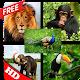 natural animal sounds (app)