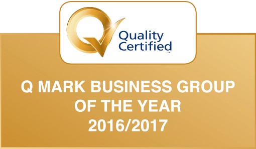 Q Mark Business Group of the Year
