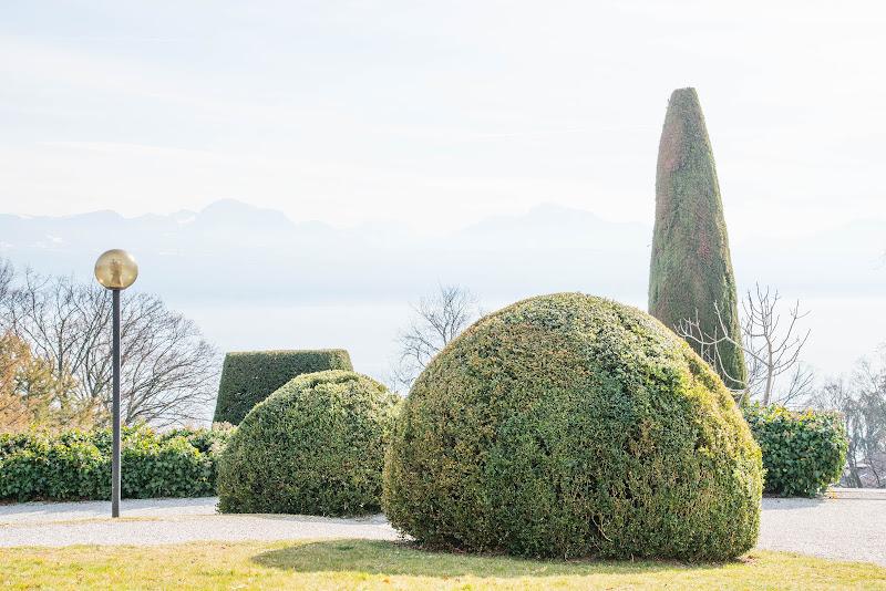 Jardin du Musée de l'Elysée, Lausanne, Suisse. di Cristhian Raimondi