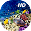 Coral Reef Live Wallpapers HD icon