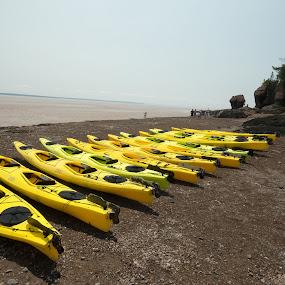 Prepare to Kayak by Alan Cline - Transportation Boats ( tides, canada, bay of fundy, kayaks, parks, beach, rocks )