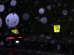 """Photo: """"Slow Down: Deer Crossing"""""""