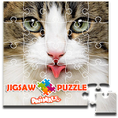 Jigsaw Puzzle 2017