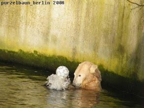 Photo: Oh, der springt mir aus dem Wasser ;-)