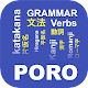 Japanese Grammar apk