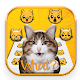 Crazy Cats Emoji Stickers Download on Windows