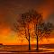 2770jpg sunset Elk Island Jun-17-17-2770.jpg