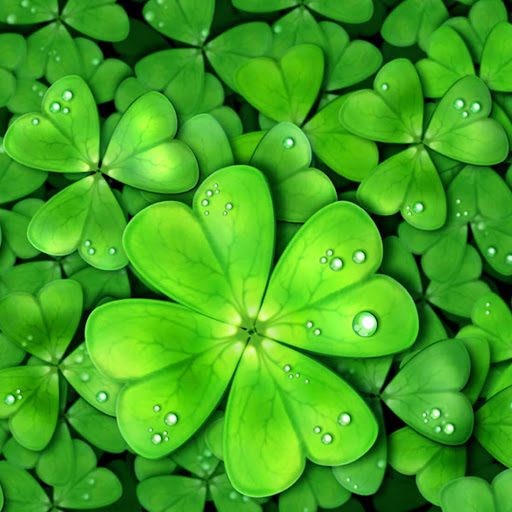 Download lucky charms live wallpaper for pc - Lucky charm wallpaper ...