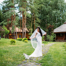 Wedding photographer Alena Maksimchuk (Alenmax). Photo of 12.10.2017