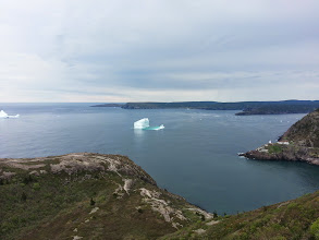 Photo: Icebergs outside of St John's harbour.