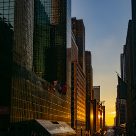 42nd Street  by VAM Photography - Buildings & Architecture Office Buildings & Hotels ( sunrise, exterior, nyc, architecture, morning,  )