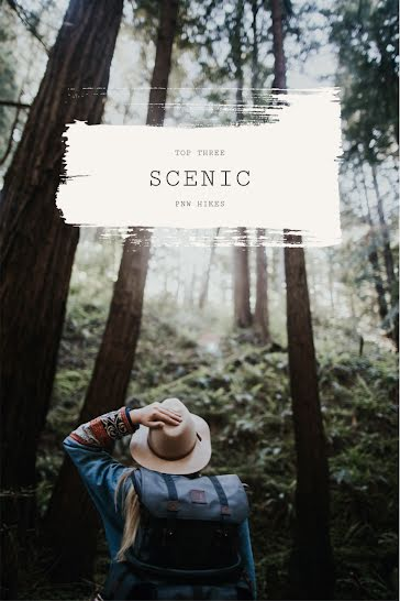 Top Three Scenic Hikes - Pinterest Pin Template