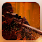 Deadly Sniper: Rogue Assassin 1.0 Apk