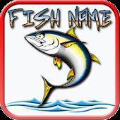 Tải Game FISH NAMES