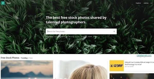 penyedia gambar gratis pexels untuk keperluan blogging