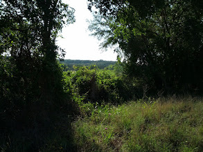 Photo: Around here you could here hunters in the distance.