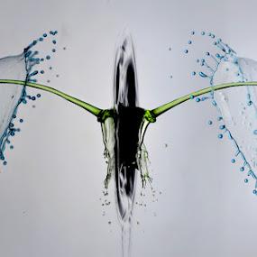 kumbang by Salahudin Damar Jaya - Abstract Water Drops & Splashes