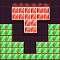 Block Puzzle Champions icon