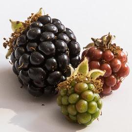 Blackberries. by Simon Page - Food & Drink Fruits & Vegetables