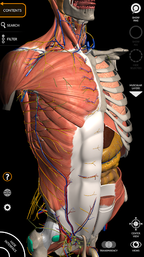 Anatomy 3D Atlas 2.0.1 screenshots 1