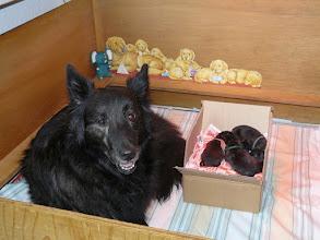 Photo: Oma Jasmijn past op haar kleinkinderen, als Phaedra eventjes naar buiten moet