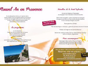 nouvel-an-en-chambre-dhotes-a-lescleriade-en-provence-dans-le-vaucluse