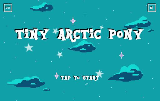 Tiny Arctic Pony
