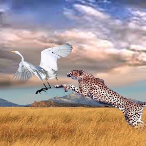 Chitah Jumps by Jaysinh Parmar - Digital Art Animals