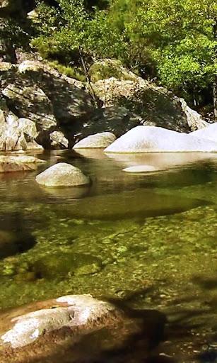 Surprizing transparent brook