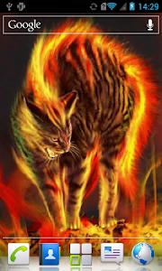 Enraged cat live wallpaper screenshot 2