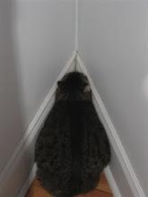 Photo: Leave Me Alone!!