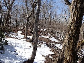雪に先行者の足跡