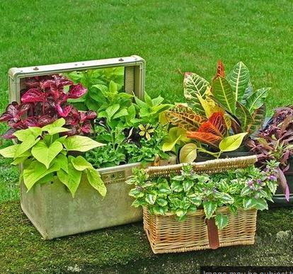 DIY Planter Design Ideas - Android Apps on Google Play