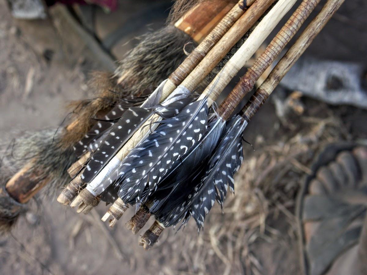 Flèches à plumes