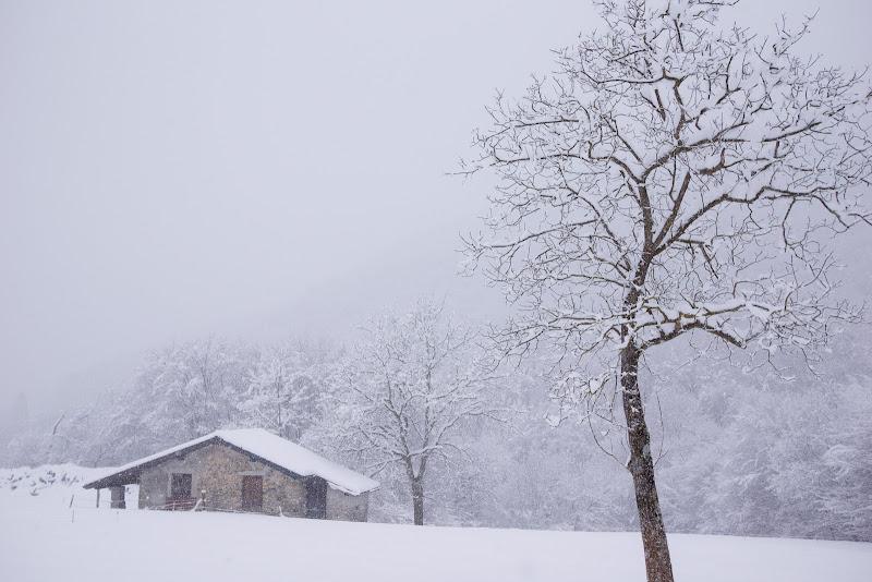 Inverno in baita di mariateresatoledo