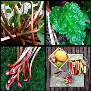 Preserved Spiced Rhubarb