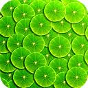 Green Wallpaper HD Custom New Tab