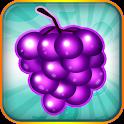 Fruit Blitz icon