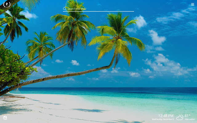 Palm Trees HD Wallpapers New Tab Theme