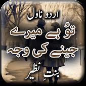 Tu Hai Mere Jeny Ki Waja Novel By Bint E Nazir Android APK Download Free By Aarish Apps