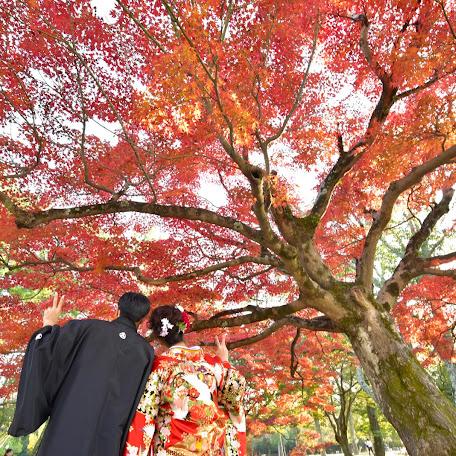 Fotógrafo de bodas Kazuki Ikeda (kikiphotoworks). Foto del 20.12.2017
