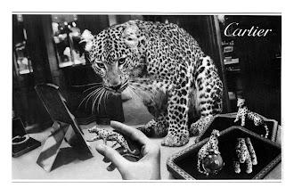 Photo: Cartier, pour Égoïste, 1999. (avec Jean Larivière)
