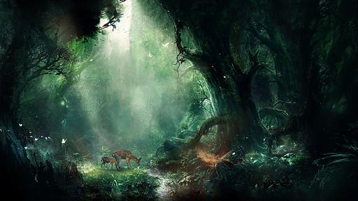 玩生活App|ジャングル ライブ壁紙免費|APP試玩