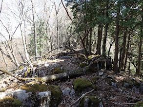 石灰岩が多く