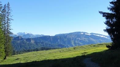 Allgäu Obermaiselstein, Blick vom Königsweg auf Allgäuer Hauptkamm und Gottsäcker nahe der Obere Gundalpe