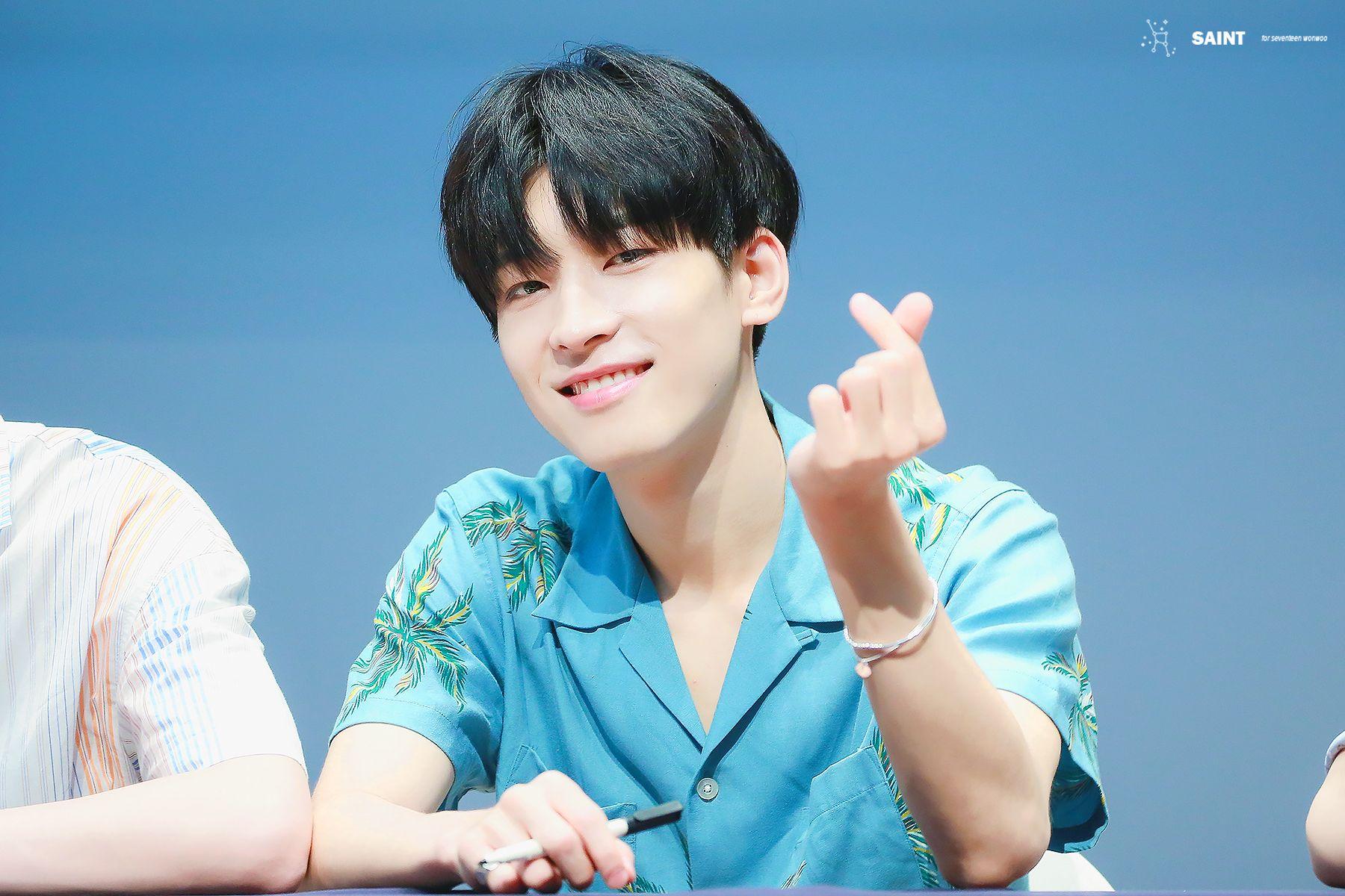 seventeen wonwoo heart