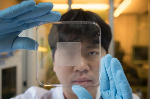 Postgraduate chemical engineering student Baik Sang-Yul holds a strip of ahesive inspired by octopus suction cups, at his laboratory at the Sung Kyun Kwan university outside Seoul.